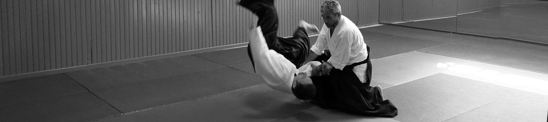 arts martiaux montpellier