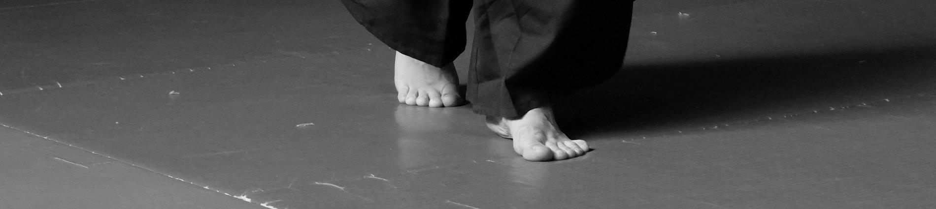 montpellier aikido