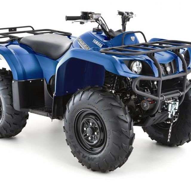 GRIZZLY 350 2x4