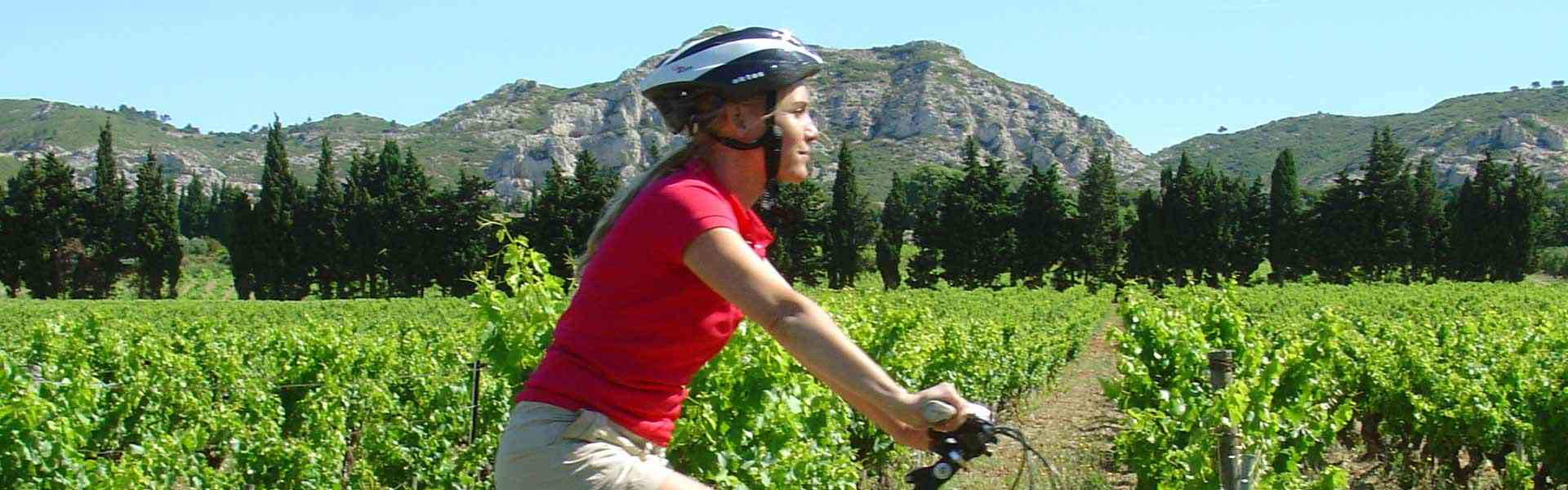 Self Guided Cycling Holidays In Provence Walk Inn Provence