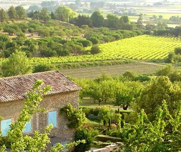 Walking Self-guided - From Van Gogh's landscapes to the Luberon