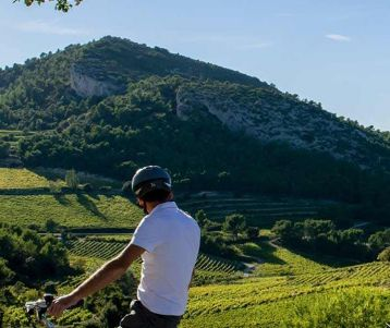 cycle-trip-hybrid-bike-road-bike-wine-road-of-provence-in-the-middle-of-the-sea-of-vineyards