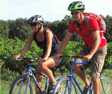 easy-cycling-trip-heart-provence-isle-fontaine-vineyards-cherry-orchards-perched-villages