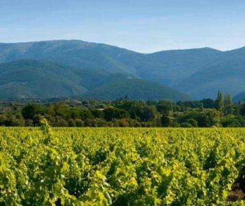 Walking Self-guided - Colours and scents of the Luberon trails
