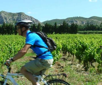 Cycling Self-guided - Cycling from Van Gogh's to the Luberon
