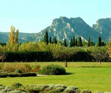 easy-cycling-van-gogh-region-saint-remy-provence-alpilles
