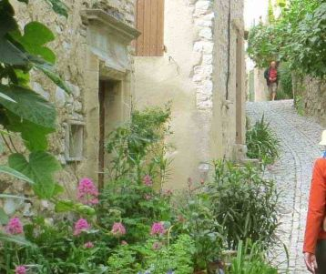 walking-and-cycling-trip-in-provence-great-combination-of-walk-and-ride-the-best-to-discover-and-enjoy-provence