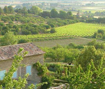 guided-walk-day-tour-in-famous-luebron-along-gordes-senanque-abbey-perched-village-ofprovence-peter-mayle