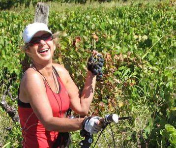 cycle-trip-wine-chateauneuf-du-pape-uzes-pont-du-gard-saint-remy-baux-de-provence-van-gogh-avignon