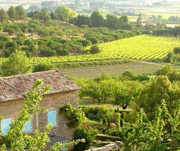 Walk from Van Gogh's landscapes to the Luberon