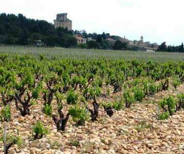 best-of-guided-cycle-holidays-in-provence-with-all-the-famous-spots-best-ride-on-quiet-roads-visiting-all-great-and-famous-market-typical-of-provence