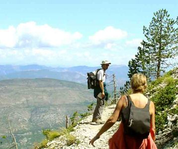 PRIVATE GUIDED DAY TRIP - Challenging - Mont Ventoux hike