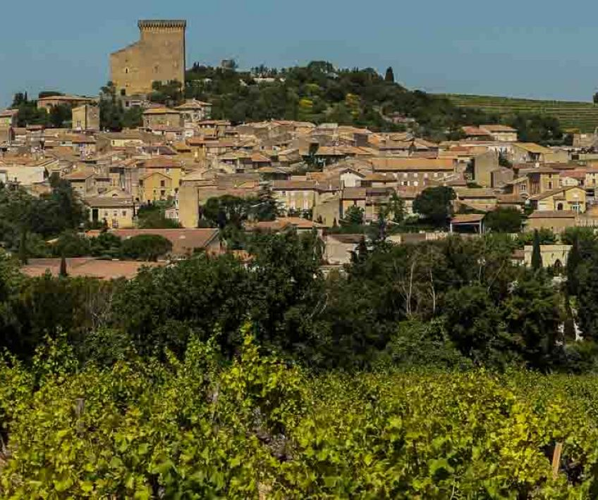 chateauneuf du pape and its vineyards