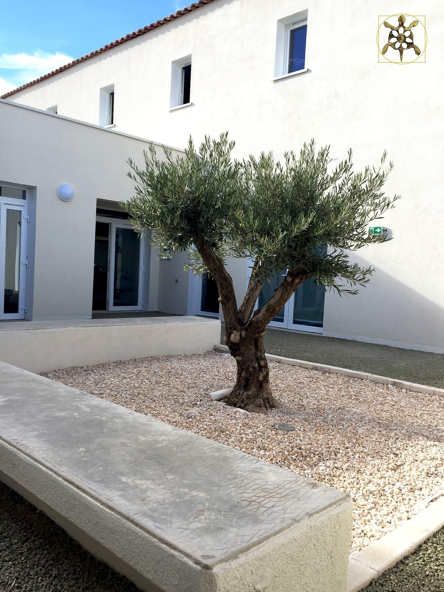 Image Nouvelle Ecole Sainte Geneviève 2
