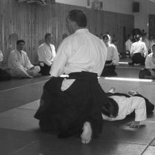 aikido montpellier