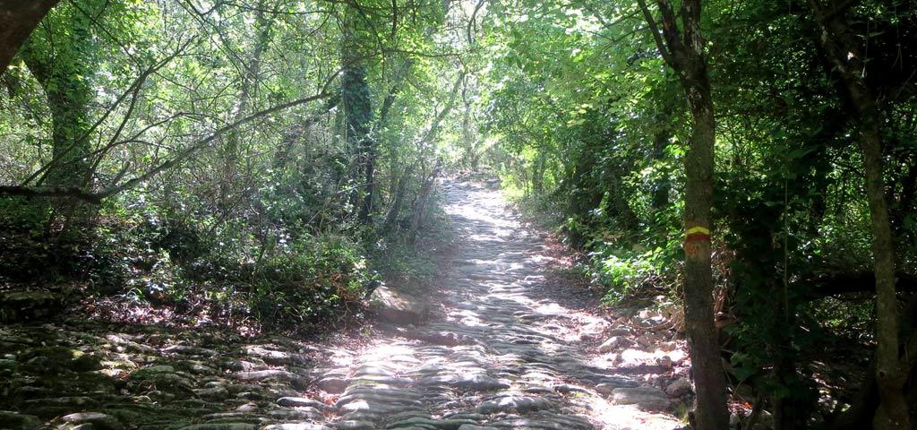 cobbled-trail-ok.jpg