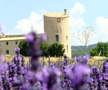 BB Chateau Gabelle - Ferrassieres