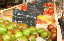 great famous market of isle in provence