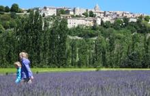 walking in lavender fields in Provence in Sault