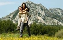 Van Gogh Olives groves Saint Remy Les Baux