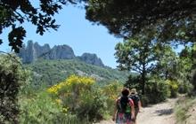 magnifique randonnée dans les cretes des dentelles de montmirail avec vue sur le mont ventoux ambiance montagne et rocher magnifique vue sur les vignobles provence tres sauvage