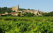 walking in chateauneuf du pape vineyards