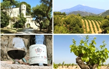 Enjoy a HALF-day wine tour in Chateauneuf du Pape !