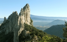 cotes du rhone wines guided walking holidays in provence