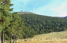 walking to mont ventoux summit