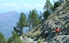 hike hiking the mont ventoux