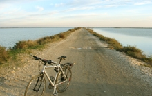 cycling-in-camargue-easy-cycling-in-provence-cycling-in-around-arles