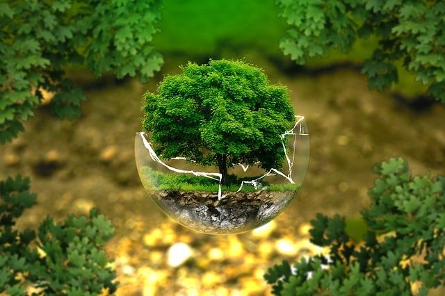 environnement_distrigaz_provence_crédit_impôt.jpeg