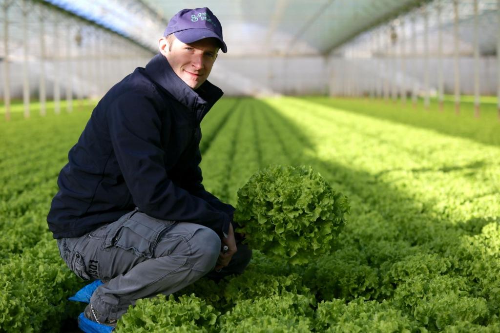 technicien agronome salades